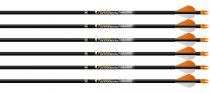 Easton - Aftermath Arrows (12x pcs)