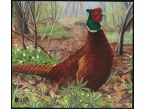 JVD - Pheasant Animal Faces - from The Archery Shop