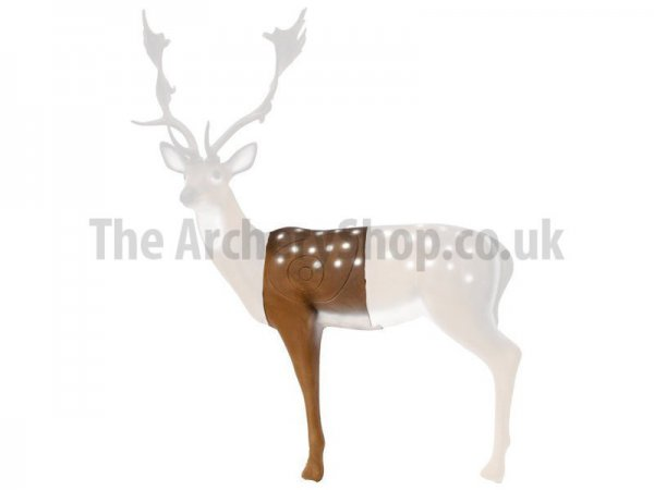 SRT - Hit Section 3D Fallow Deer