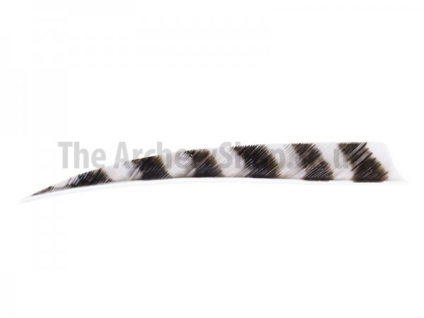 "Trueflight - RW 5"" Barred Shield Feathers (12pcs)"
